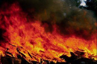 За информацию о пожаре, в котором погибли четыре человека, назначено крупное вознаграждение