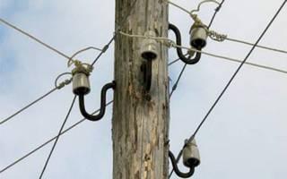 Упавшее в Тайшетском районе дерево оставило без света два объекта