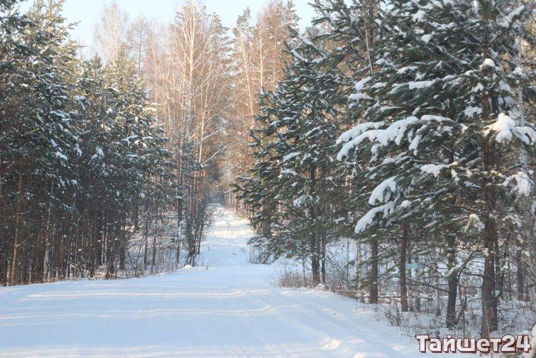 Новогодняя ночь в Тайшете будет тёплой