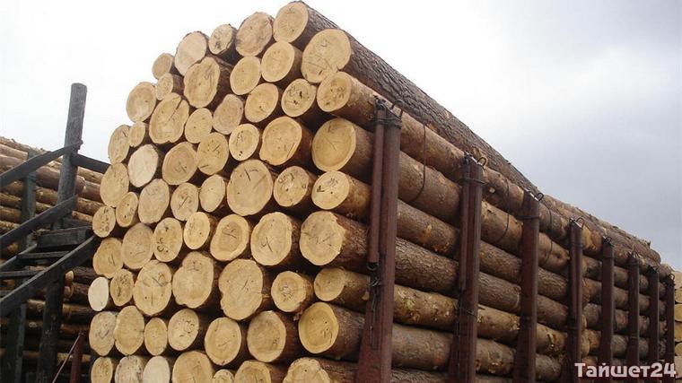 Одного из тайшетских лесозаготовителей вдруг поймали на контрабанде дерева