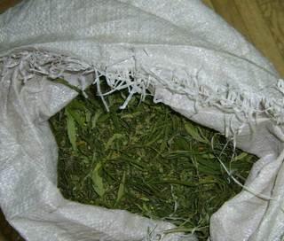 Жителю Тайшетского района грозит до 10 лет тюрьмы за пять мешков марихуаны