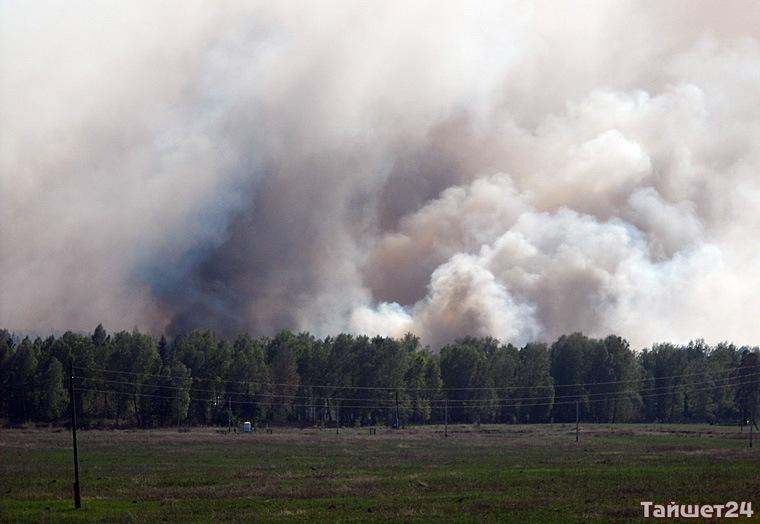 В Тайшетском районе вчера обнаружили и потушили два лесных пожара