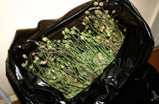 В Тайшете сбытчик наркотиков приговорен к 9 годам лишения свободы в колонии строго режима