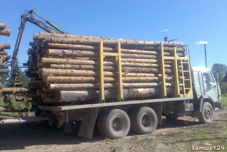 В Тайшетском районе погиб водитель лесовоза