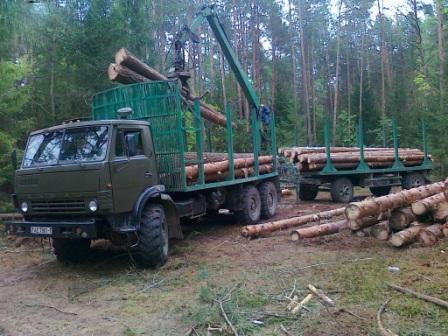 В Тайшетском районе перевернулся лесовоз. Пассажир госпитализирован