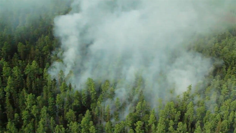 РежимЧС ввели вИркутской области из-за лесных пожаров
