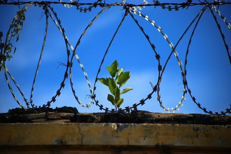 Убийца девочки из Нижнеудинска получил пожизненный срок