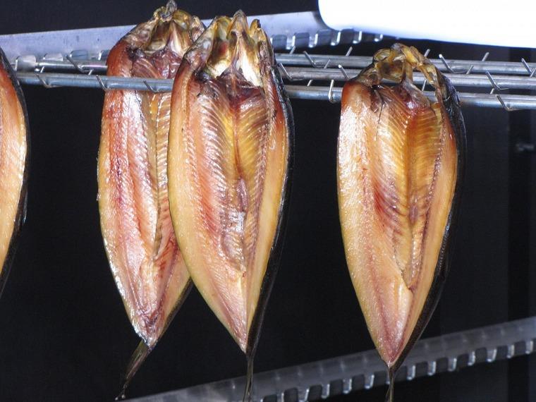 Два нижнеудинских браконьера за вылов рыбы с применением электротока заплатят почти полмиллиона рублей