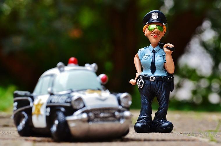 В Тайшете состоялись первые уроки малой полицейской Академии
