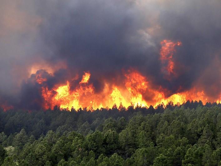Восемь лесных пожаров потушили вИркутской области