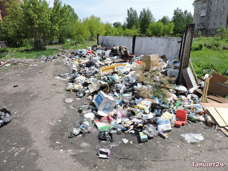 Обитатели некоторых домов в микрорайоне Пахотищева ни в какую не хотят отвыкать от прежнего места сбора отходов жизнедеятельности