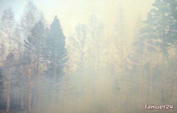 Лес начал гореть вИркутской области