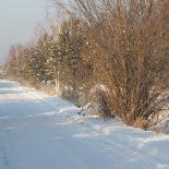 Завершение строительства дороги до Шелаево и автомобильного моста через Пойму может начаться в 2018 году