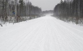 При строительстве автодороги Тайшет-Чуна-Братск украли древесины почти на миллион рублей