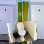 В школе №1 Тайшета появился тёплый туалет и памятник чиновничьему равнодушию