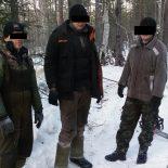 Бригада нелегальных вырубщиков леса задержана с поличным в Иркутской области