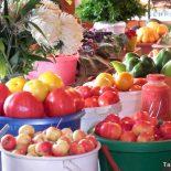 Праздник урожая: яства, поделки и новые рецепты