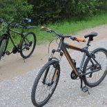 Скорость, дорога и двухколёсный друг: какие правила нужно соблюдать велосипедистам