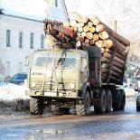 За три месяца Иркутская область продала леса на десять годовых бюджетов Тайшетского района