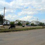 Жительница Алзамая сколотила преступное сообщество чёрных лесорубов