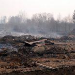 Работу руководства Бирюсинского лесничества назвали слабой