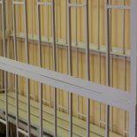 Консультация юриста. Законно ли держать подсудимых в клетках в зале суда
