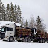 Лесозаготовительная компания заплатит штраф за пострадавшего работника