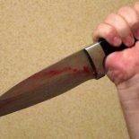 В селе Борисово 27-летняя женщина зарезала 18-летнего именинника
