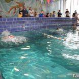 В Тайшете прошло Открытое Первенство по плаванию. Фоторепортаж
