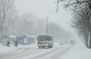 Автобус № 65 зажал ногу школьницы в дверях и протащил несколько метров в Иркутске