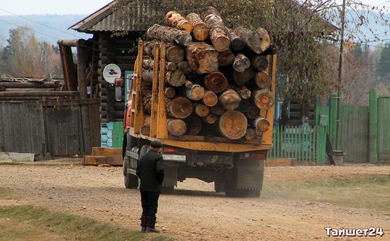В Тайшетском районе полиция задержала очередную банду лесозаготовителей
